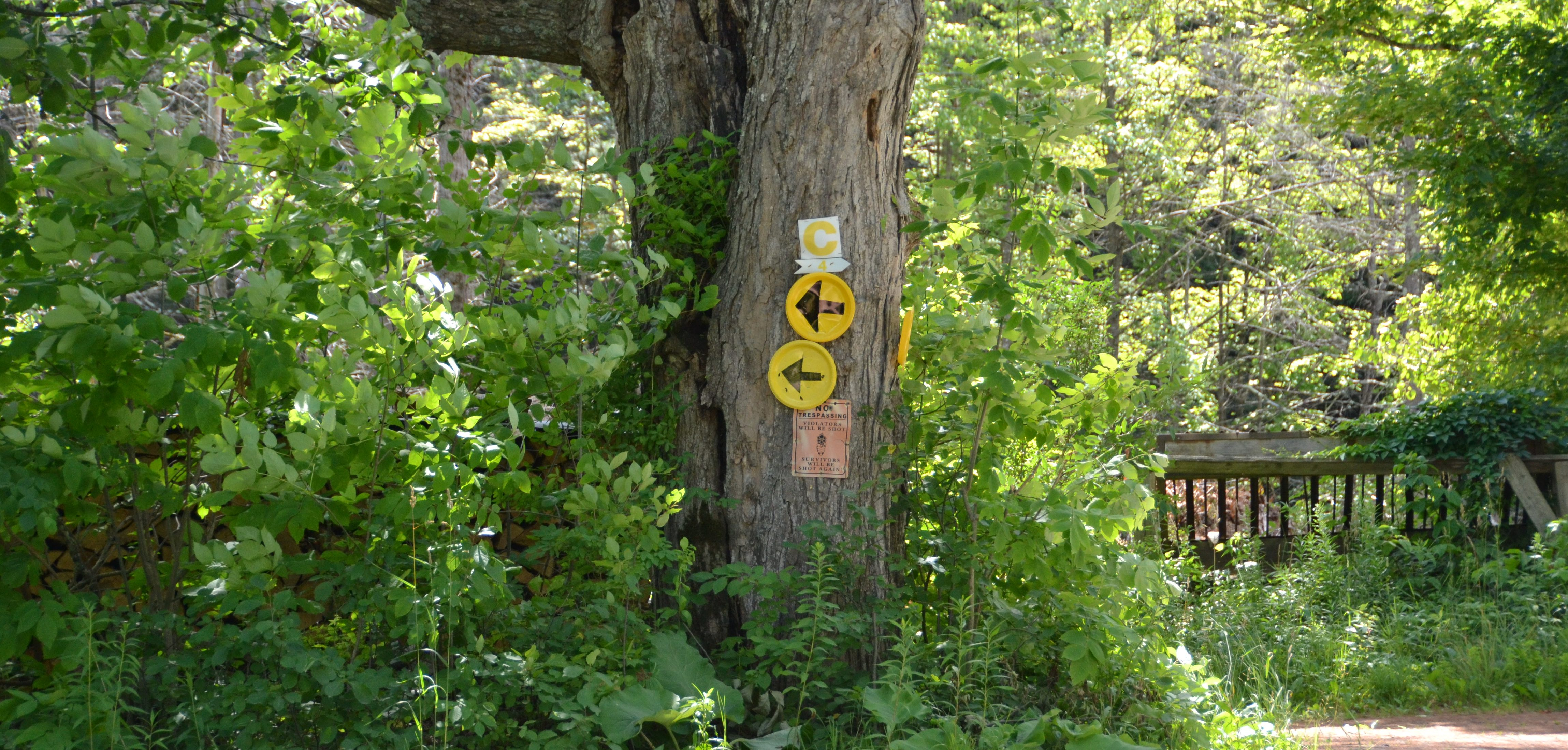 VT100 - Yellow Course Markers