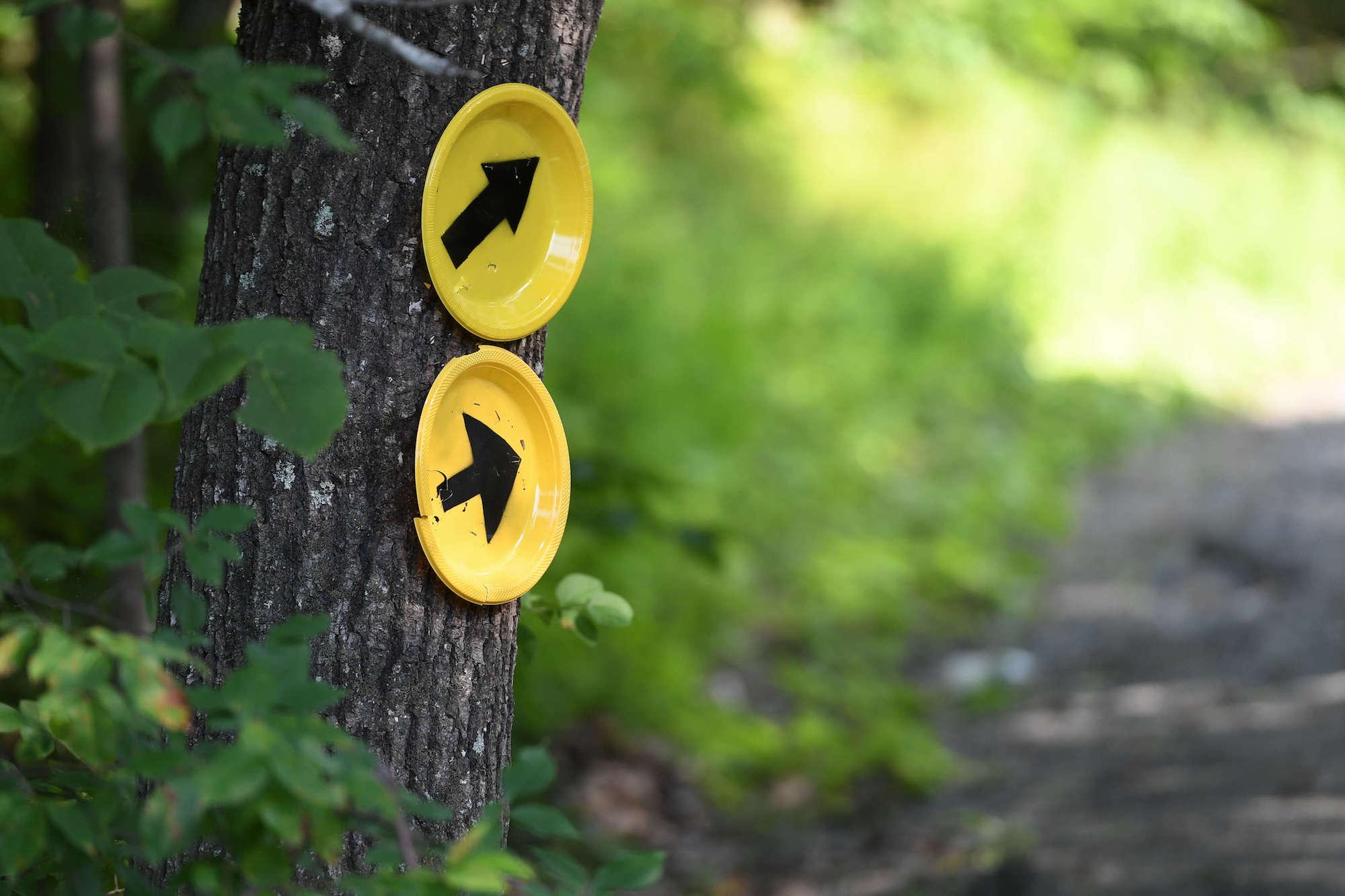 2021 Vermont 100 – COVID Updates